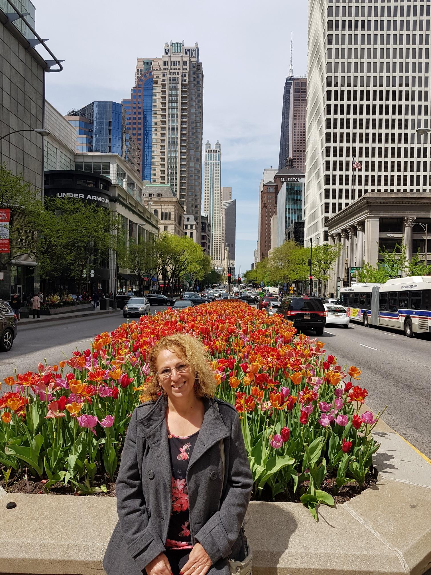 טיול בשיקגו
