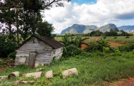 יומן מסע בקובה: ויניאליס – עמק הקפה והטבק